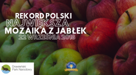 W Drawieńskim Parku Narodowym będą bić Rekord Polski z okazji Święta Jabłka - Z okazji tegorocznego Święta Jabłka już w najbliższą sobotę 22 września 2018 na terenie Drawieńskiego Parku Narodowego odbędzie się oficjalna próba pobicia Rekordu Polski na największą mozaikę z jabłek.
